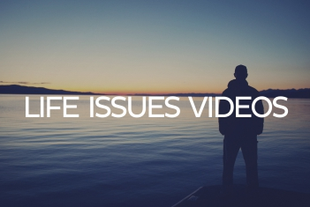 life issues videos no orange